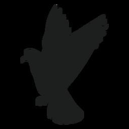 Volando abajo paloma