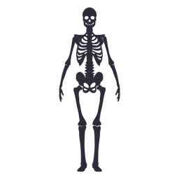 Front view skeleton silhouette