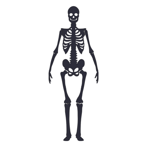 Front view skeleton silhouette
