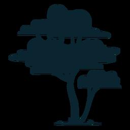 Hoher Safari-Baum