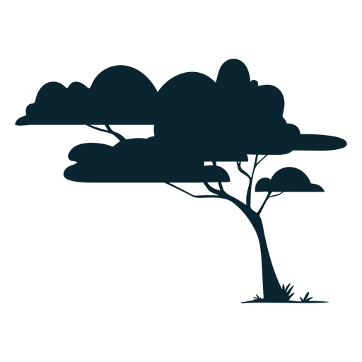 Safari tree leafy Transparent PNG