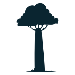 Safari tree tall