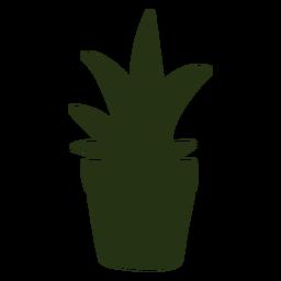 Silhouette indoor plant