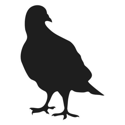 Standing pigeons silhouette