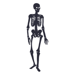 Silueta esqueleto de pie