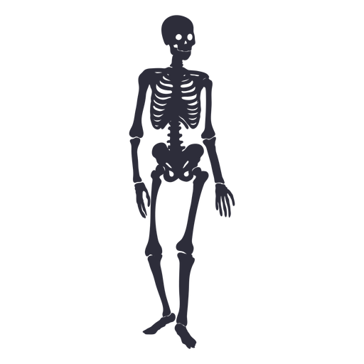 Standing skeleton silhouette Transparent PNG