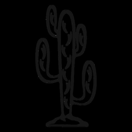 Golpe cactus vaquero Transparent PNG