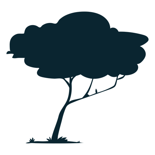 Árbol de safari de rama delgada Transparent PNG