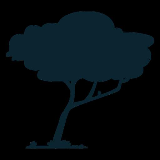 Thin branch safari tree Transparent PNG