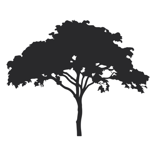 Wide tree silhouette Transparent PNG