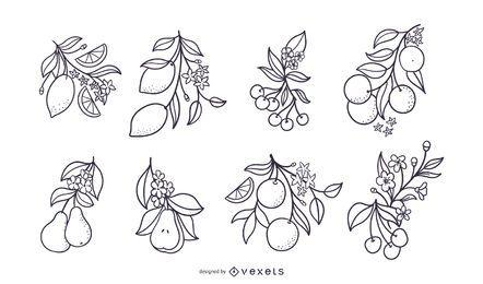 Conjunto de frutas dibujadas a mano con flores