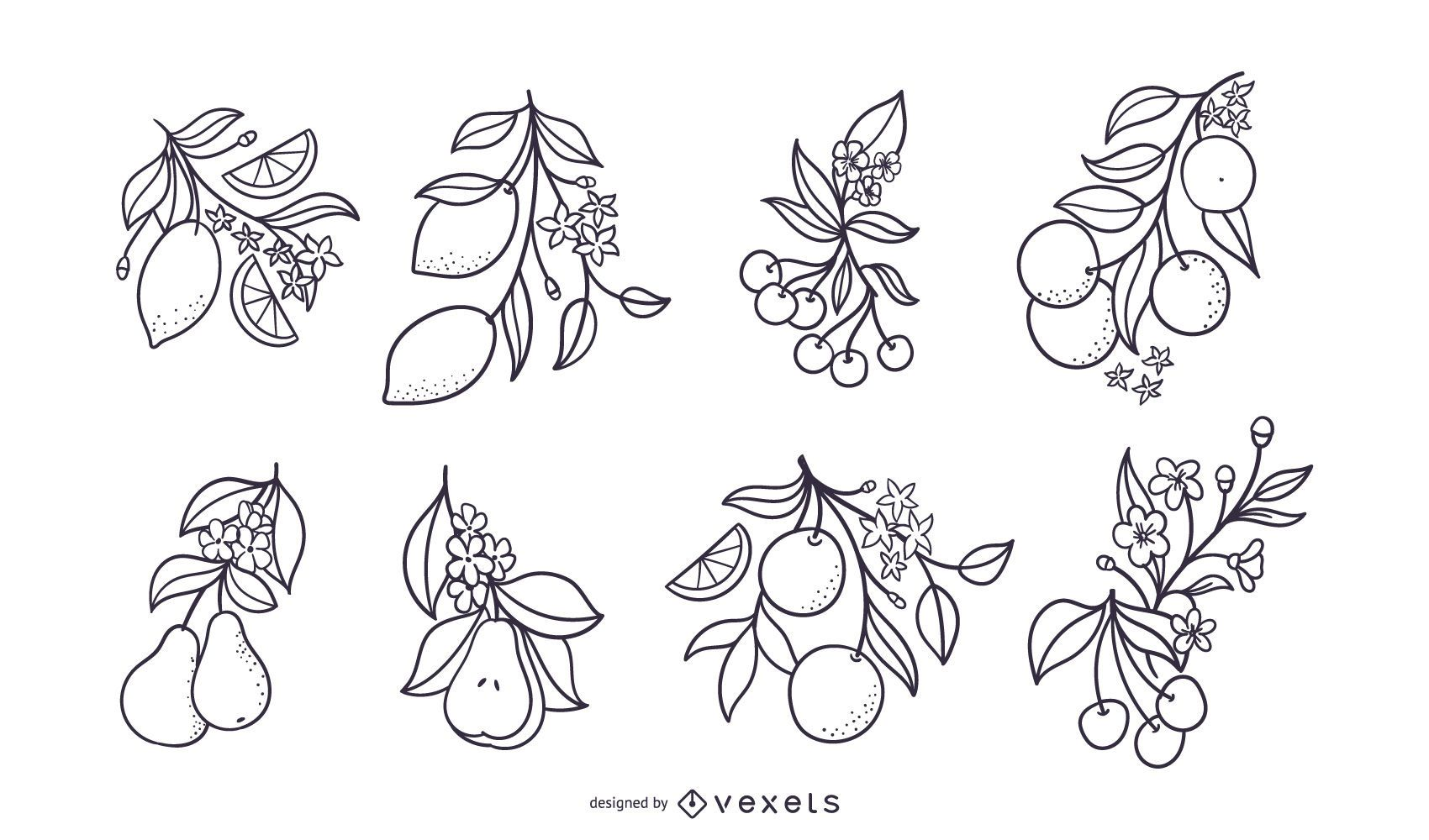 Hand drawn fruits with flowers set