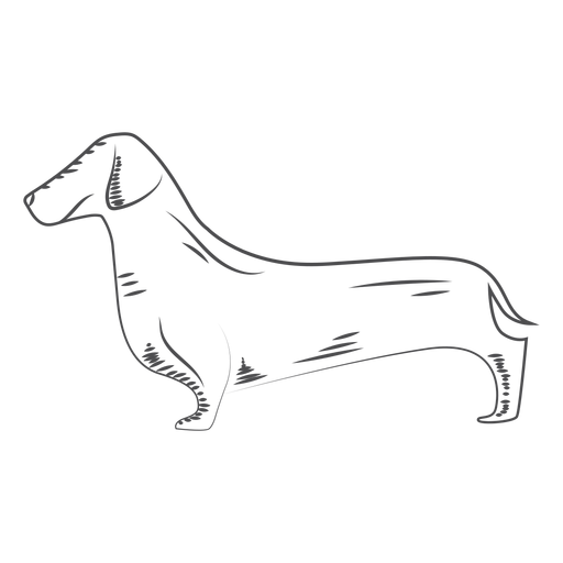 Hand drawn dog dog Transparent PNG