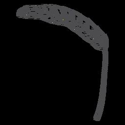 Planta de lúpulo dibujada a mano