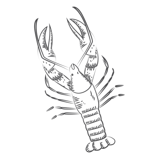 Hand drawn lobster Transparent PNG