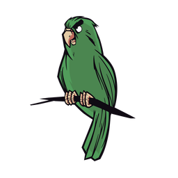 Illustration green parrot