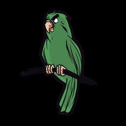 Papagaio de ilustração verde