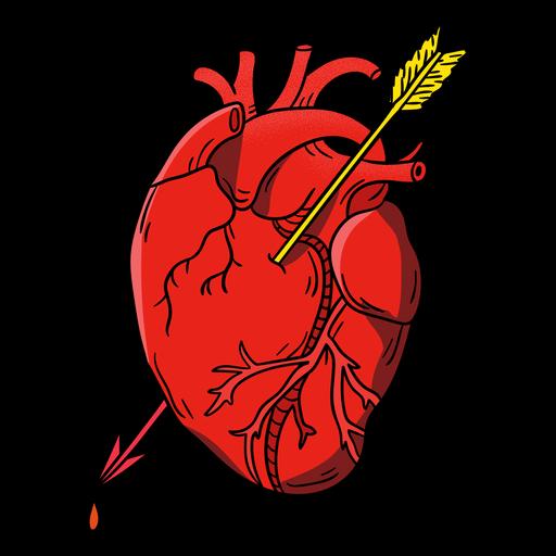 Corazón de ilustración