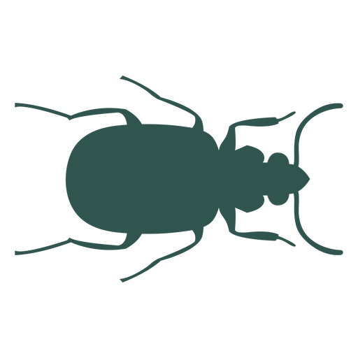 Insect silhouette bug