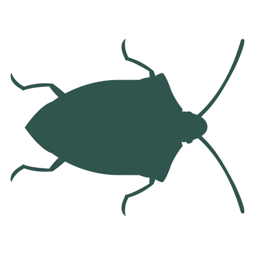 Insect silhouette bug green