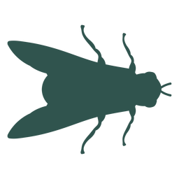 Insect silhouette bug fly