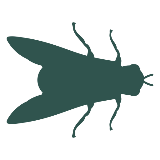 Insecto silueta bicho mosca Transparent PNG