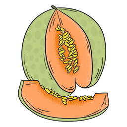 Melon detailed fruit