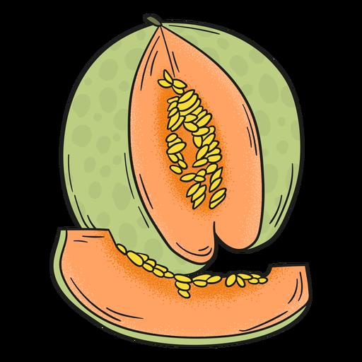 Melon detailed fruit Transparent PNG