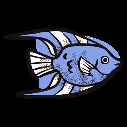 Peixe exótico animal do oceano