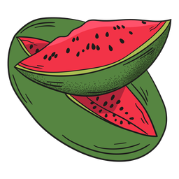 Frutas detalhadas de melancia