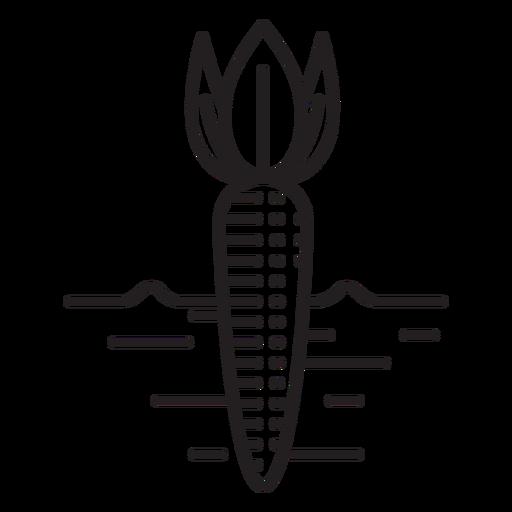 Farm carrot icon