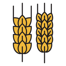 Farm wheat colored icon