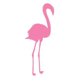 Flamingo standing straight silhouette