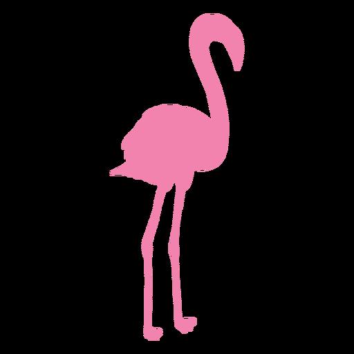 Flamingo de pie silueta recta