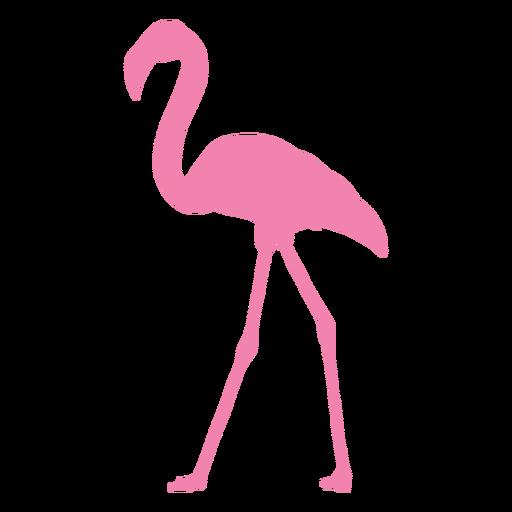 Flamingo walking silhouette