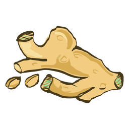 Indian dish turmeric hand drawn
