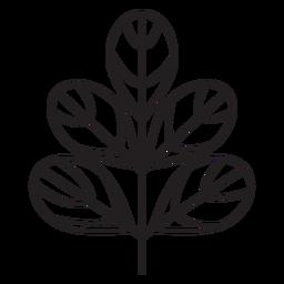 Traço grosso cicrular geométrico de folha