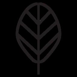 Hoja geométrica elíptica trazo de una sola línea