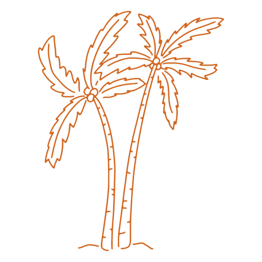 Palm tree hand drawn Transparent PNG