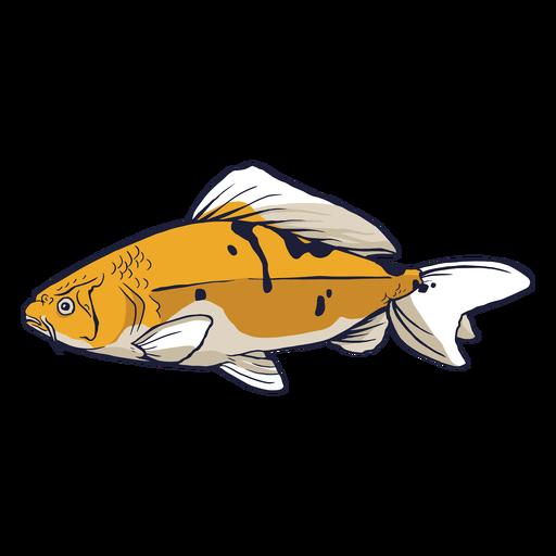 Cool carp colored Transparent PNG