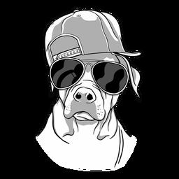 Óculos de cachorro legal