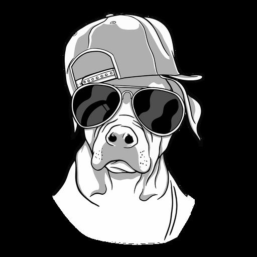 Cool dog glasses Transparent PNG