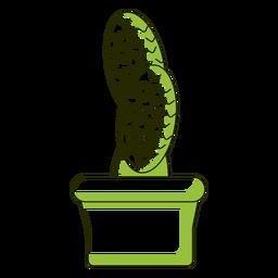 Ilustración de cactus de hojas oblongas
