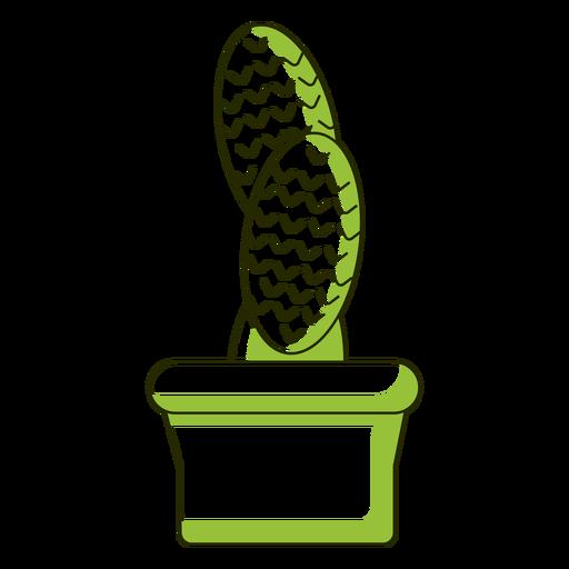 Ilustración de cactus de hojas oblongas Transparent PNG