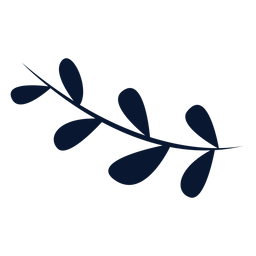 Folhas de forma oblonga