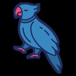 Pájaro pirata plano