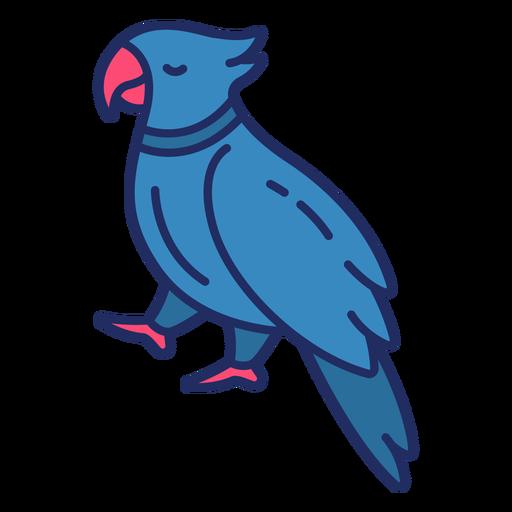 Pájaro pirata plano Transparent PNG