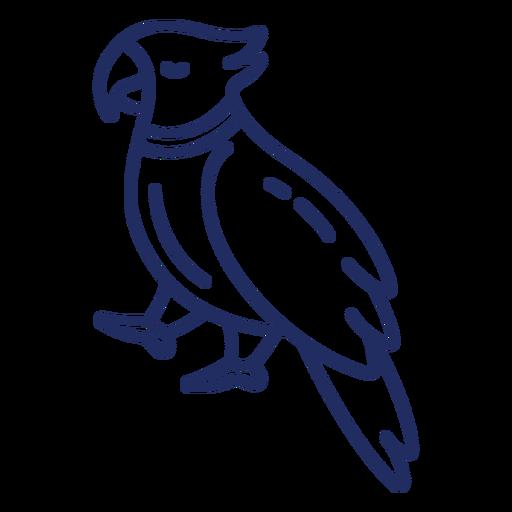 Pirate bird stroke Transparent PNG