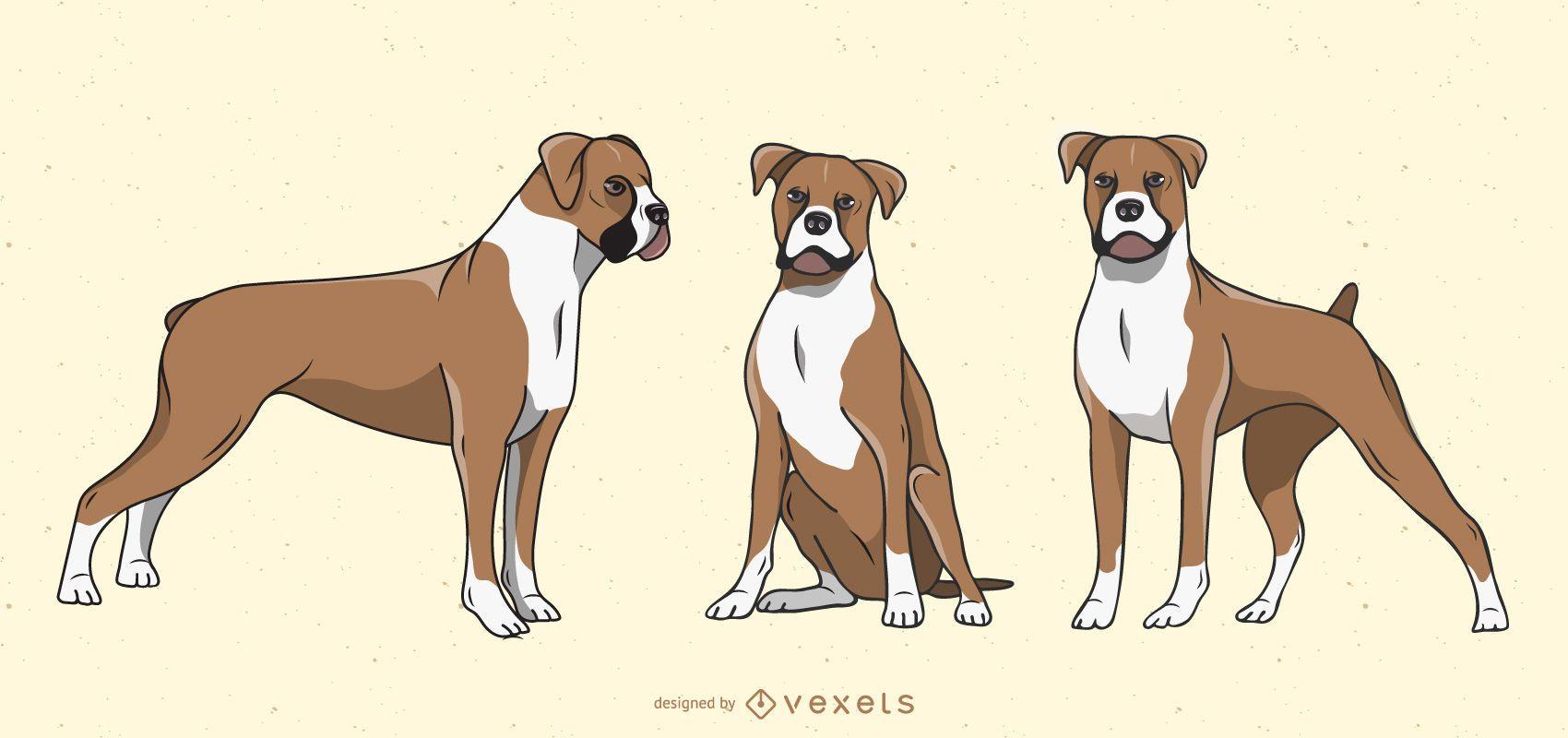 Boxer Dog Illustration Set