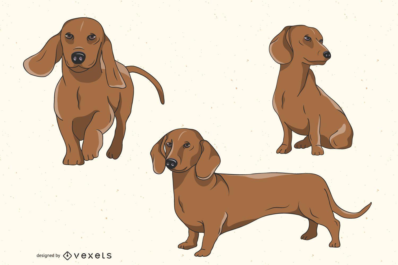 Conjunto de ilustración de perro Dachshund